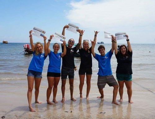 My Divemaster training experience