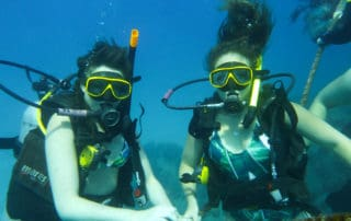 scuba diving koh tao