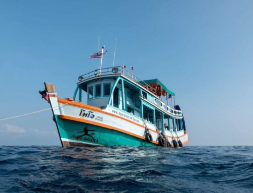 Koh Tao Diving Boat